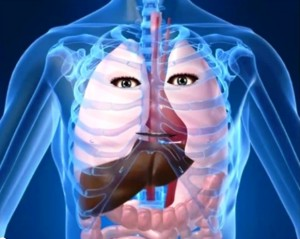 Happy Lungs of a Nonsmoker