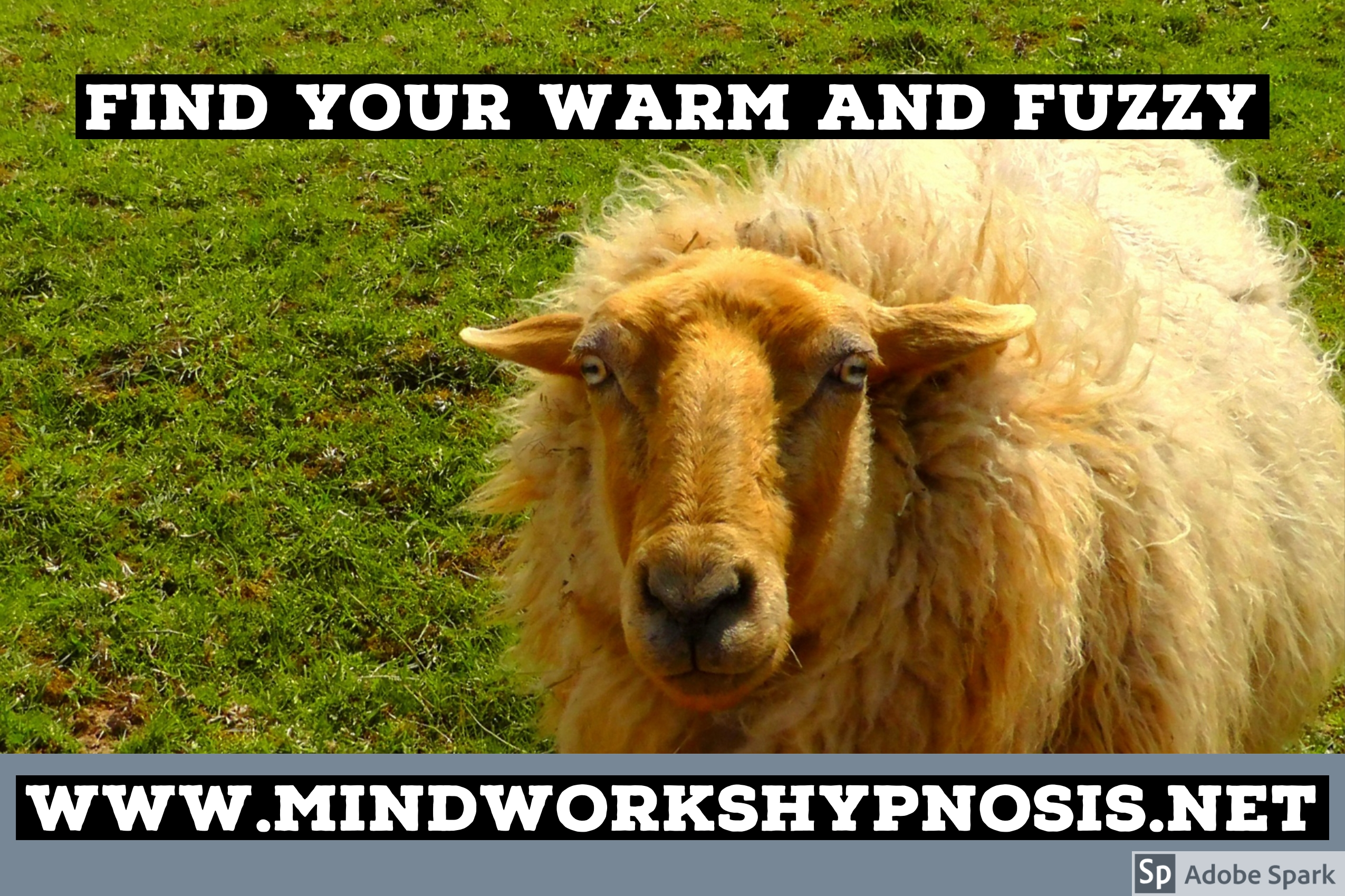 Good feelings for Sale at Mindworks Hypnosis & NLP hypnotherapy clinic in Bellevue.